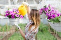 Bewässerungsblumen des netten Mädchens im Gewächshaus Stockfoto