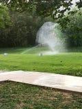 Bewässerungsbrunnen im Sommer stockbild