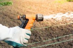 Bewässerungsernten auf dem Feld Lizenzfreies Stockfoto