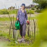 Bewässerungsgarten Stockfotografie