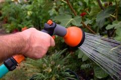 Bewässerungsschlauch stockbild