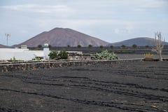 Bewässerungssystem stockbilder