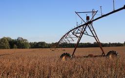 Bewässerungssystem auf Feld Stockfotos