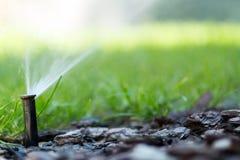 Bewässerungssystem in der Funktion lizenzfreie stockbilder