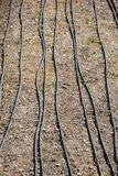 Bewässerungssystem unter Verwendung der Berieselungsanlagen auf einem bebauten Gebiet stockfoto