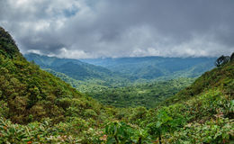 Bewölken Sie den Wald, der Bosque Nuboso Monteverde, Costa Rica bedeckt Lizenzfreies Stockbild