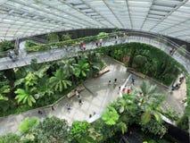 Bewölken Sie Forest Attraction Gardens durch den BaySinga-Pore Bucht-Jachthafen, wie Stockfotos