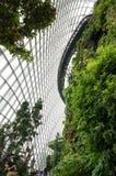 Bewölken Sie Waldhaube am Garten durch die Bucht in Singapur Stockfoto