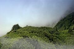 Bewölkte Berge von flores, acores Inseln Stockfoto