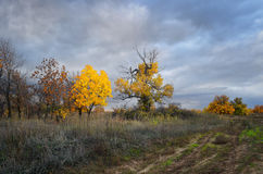 Bewölkte Herbst-Landschaft Lizenzfreies Stockfoto