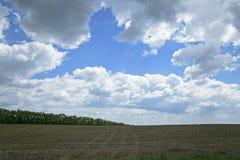 Bewölkte Landschaft Lizenzfreies Stockbild