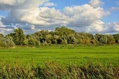 Bewölkte Marschlandlandschaft in Bourgoyen, Gent Lizenzfreie Stockfotografie