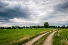 Bewölkte niederländische Sommerlandschaft im Juni nahe Delden Twente, Overijssel Stockbilder
