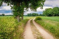 Bewölkte niederländische Sommerlandschaft im Juni nahe Delden Twente, Overijssel Stockfoto