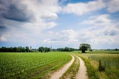 Bewölkte niederländische Sommerlandschaft im Juni nahe Delden Twente, Overijssel Stockbild