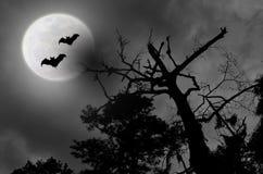 Bewölkte Vollmond-Schläger des gespenstischen nächtlichen Himmels Stockfoto