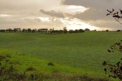 Bewölkter Himmel über dem Feld lizenzfreies stockfoto