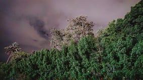 Bewölkter Himmel stockbild