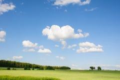 Bewölkter Himmel des Sommers über grünem Feld Stockbilder