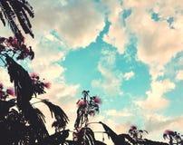 Bewölkter Sommer-Sonnenuntergang lizenzfreie stockfotografie