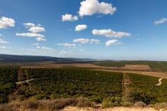 Bewölkter Tag - Addo Landscape Stockbild