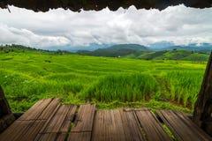 Bewölkter Tag mit grünem terassenförmig angelegtem Reisfeld an Bong Piang-Wald in Mae Chaem, Chiang Mai, Thailand lizenzfreie stockfotografie