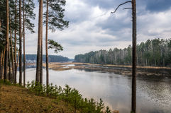 Bewölkter und regnerischer Tag im Wald auf den Banken des Flusses Pyshma, Russland, Ural stockbilder