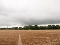 Bewölktes britisches Erntefeld erntete mit Wegweg durch Stockbild