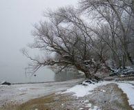 Bewölktes Wetter, schneebedeckter Flussufer Stockbild