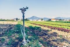 Bew?sserungsbetriebssystem auf einem Feld, Landwirtschaft stockbilder