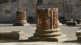 Bewaard blijft van kolommen op vierkant in Pompei, hagediszitting op steenmuur stock footage