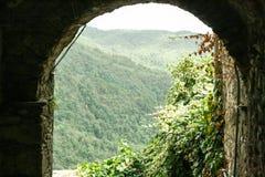 Bewaldete Berge Stockfotos