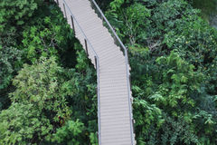 Bewaldete Brücke im Park Stockfotos