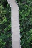 Bewaldete Brücke im Park Stockbild