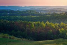 Bewaldete Hügel mit hellem Sonnenlicht lizenzfreies stockfoto