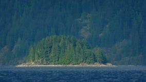 Bewaldete Insel auf dem See stock video footage