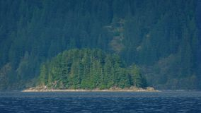 Bewaldete Insel auf dem See stock footage