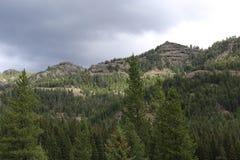 Bewaldeter Berg Stockfotos