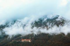 Bewaldeter Berghang eingehüllt in Nebel stockbilder