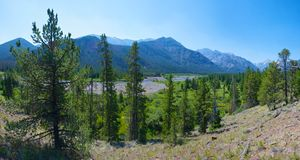 Bewaldetes Wyoming-Tal Stockfoto
