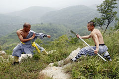 Bewapend gevecht. stock foto's