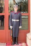 Bewapende Wacht Stands By stock afbeeldingen