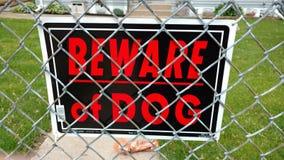 beware собака Стоковое фото RF