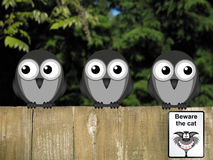 Beware the Cat. Comical beware the cat sign with vigilant birds on the lookout perched on a timber garden fence against a foliage background Stock Image