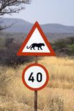 Beware of cheetahs and leopards. Africat Foundation promoting large carnivore conservation and animal welfare Royalty Free Stock Photo