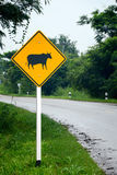 Beware of the cow sign. Royalty Free Stock Photo