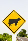 Beware of cow Royalty Free Stock Images