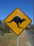 Beware do canguru fotografia de stock