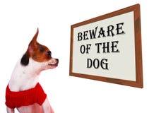 Beware do sinal do cão fotos de stock royalty free