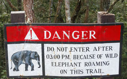 Beware of Elephants Royalty Free Stock Photos